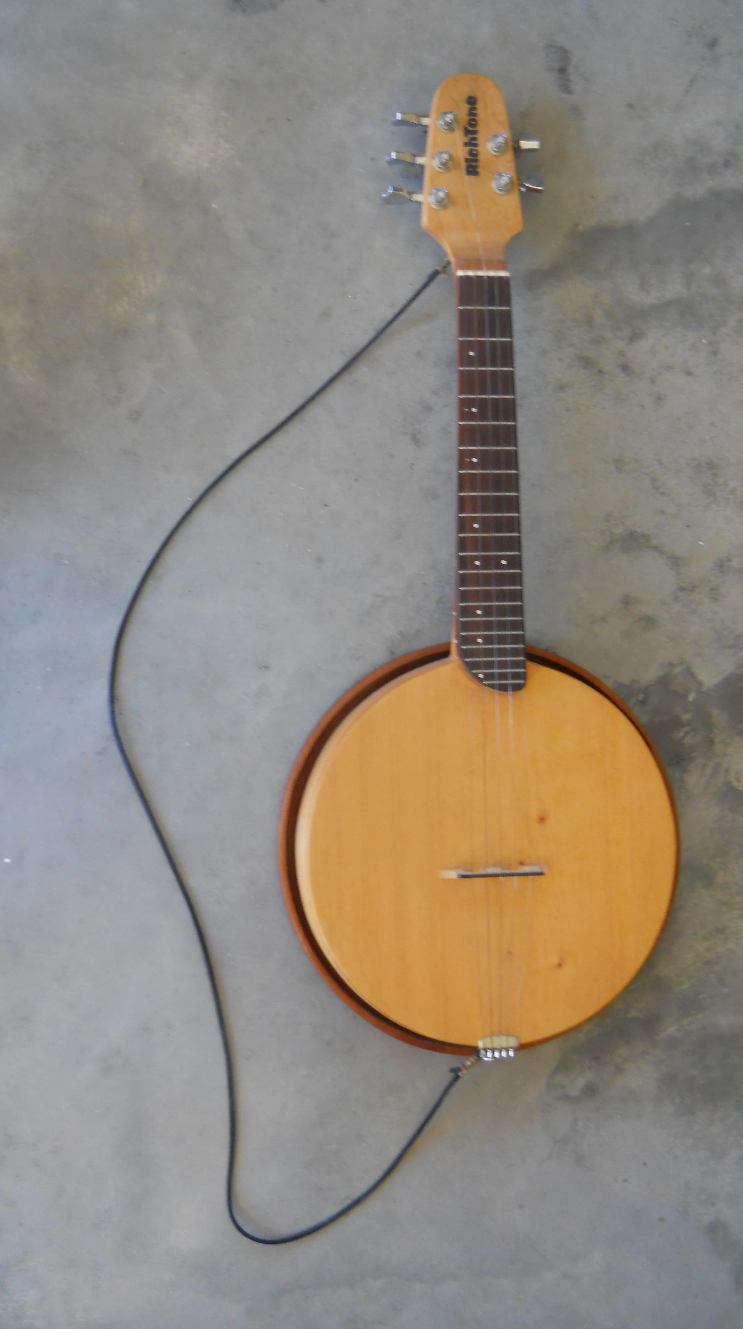 Richtone Unique Stringed Instruments